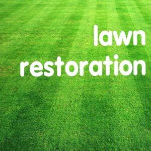 Lawn-Restoration800[1]